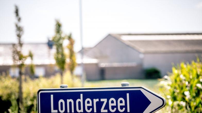 Larkom Webdesign in Londerzeel TV Londerzeel Londerzeel wegwijzer